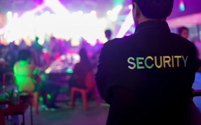 Why Your Large Event Needs Private Security
